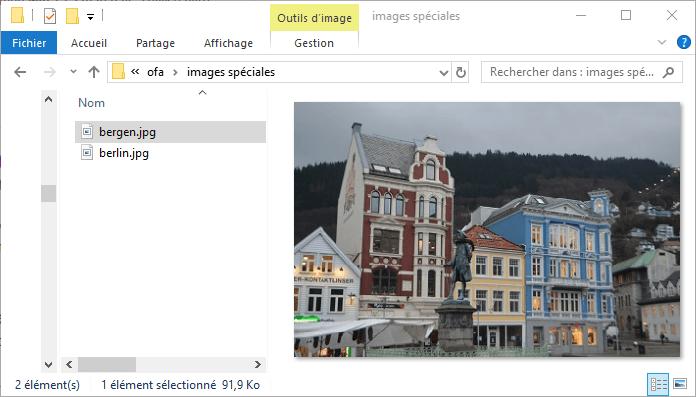 Affichage d'une image dans le volet de visualisation de l'explorateur Windows