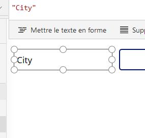 Formulaire PowerApps multilingue